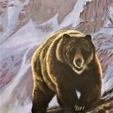 Speiker Mountain Grizzley,<br/>24X44inches<br/>Acrylic on panel<br/>SOLD $2500  canvas giclee available